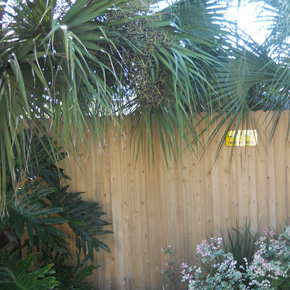 Previous Fence Installations